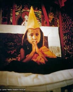 Yangsi Rinpoche, 1975