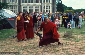 """Wellie Wanging"" with Lama, 1979"